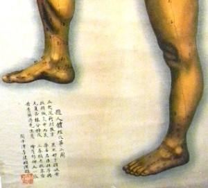 Tallonite e agopuntura omeopatica