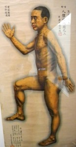 Agopuntura omeopatica e stitichezza