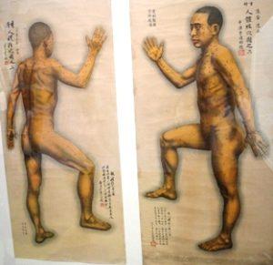 yoga e agopuntura