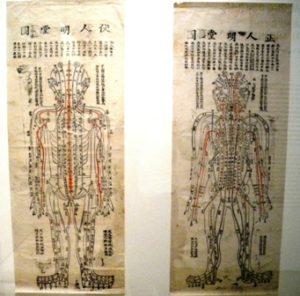 Algologia con agopuntura